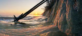 Двойная лиственница сорвалась с откоса во время шторма, и застыла, как будто бы принесённая сюда мощным потоком.