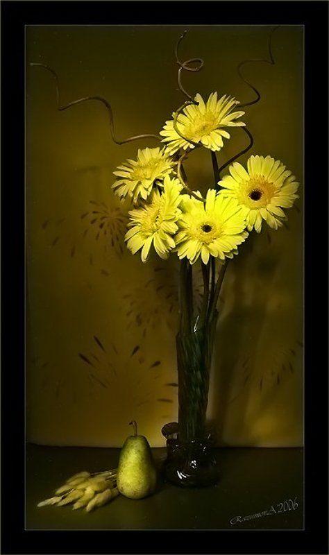 Букет, герберы, цветы, световая кисть, натюрморт Монотонный натюрморт с монобукетомphoto preview