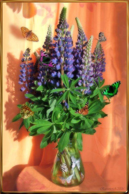 Люпины, бабочки, натюрморт, лето Люпины и бабочкиphoto preview