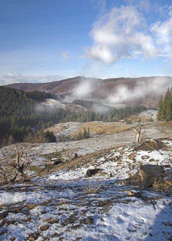 карпаты, горы photo preview