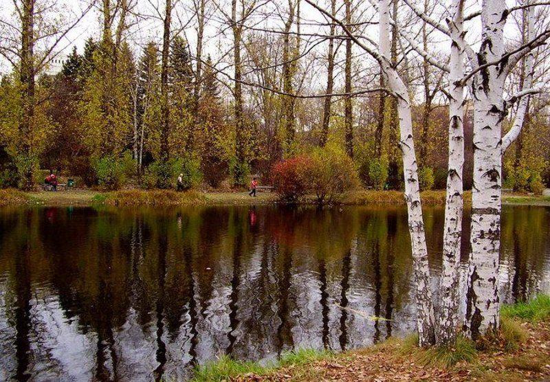 осень, парк Осенний парк 2photo preview