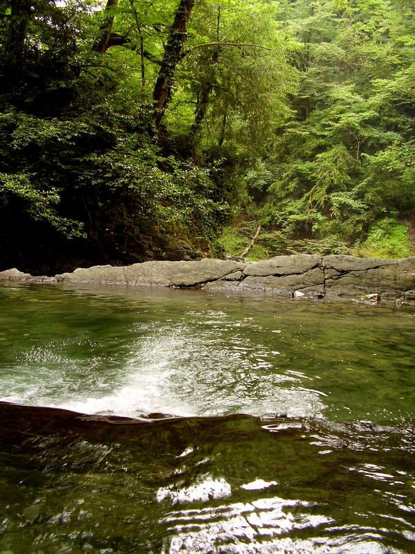 озера любви, водопад, лес, сочи Озера любви (Дагомыс)photo preview