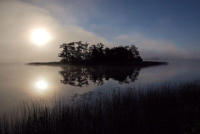 селигер, озеро, остров, рассвет, полновский плес селигеское утроphoto preview