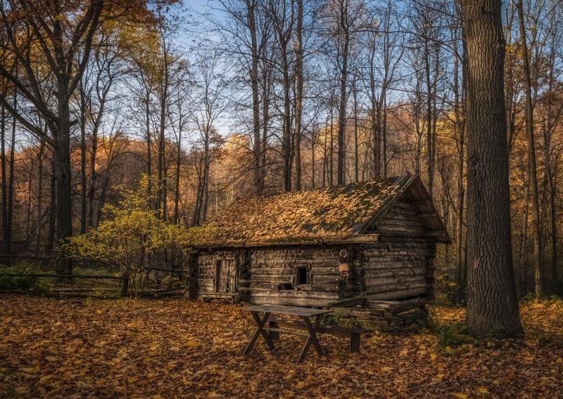 октябрь. заброшенная банька. музей деревянного зодчества. Банька.photo preview