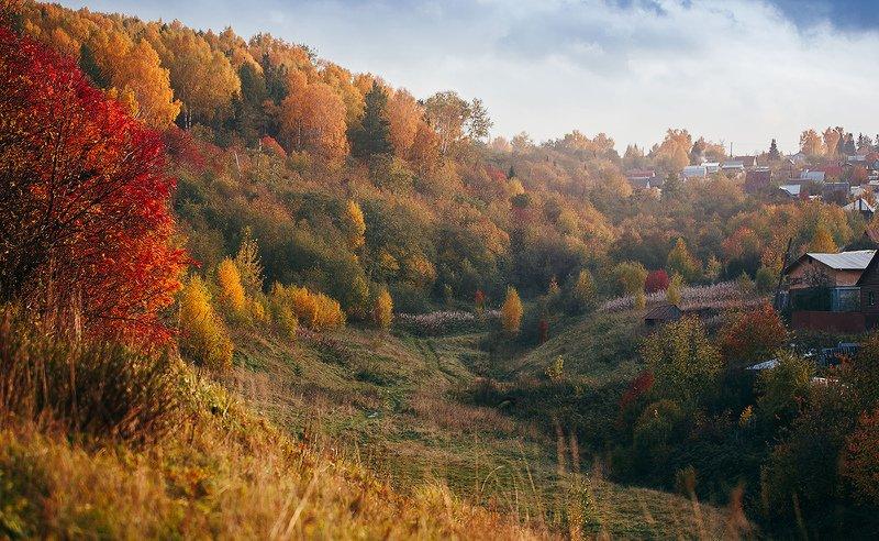 осень, природа, сентябрь Природа красиво рождается и красиво умирает...photo preview