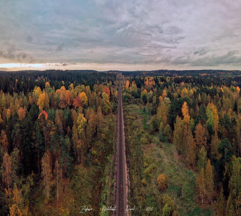 Осень достала краски.photo preview