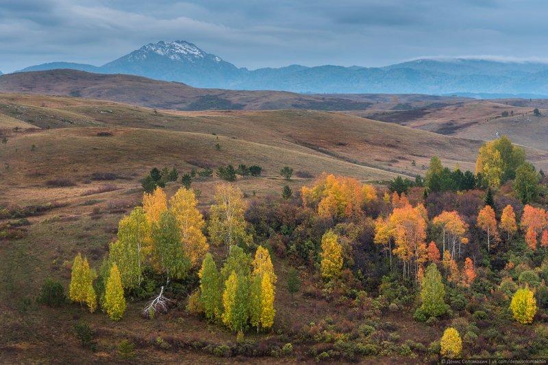 горнаяколывань, синюха, горасинюха, осеньнаалтае, алтай2020 Осень в Горной Колываниphoto preview