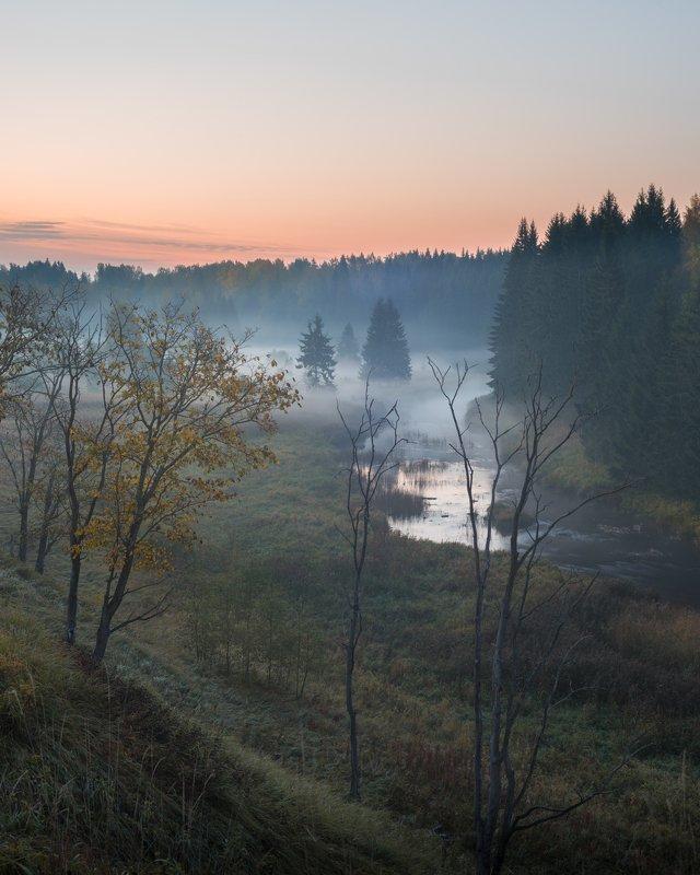 ленинградская область, лемовжа На зареphoto preview
