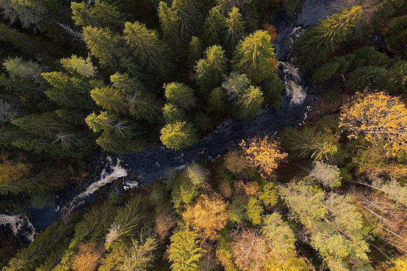 карелия, водопады, karelia, waterfall Карельский Инь и янphoto preview