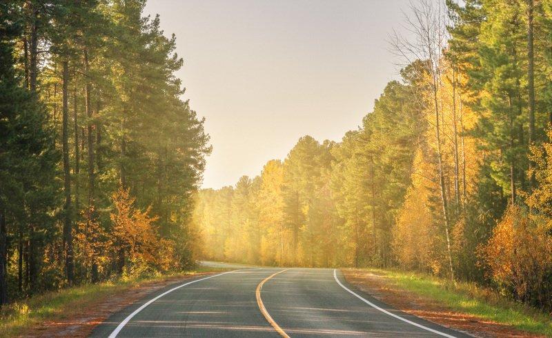 Autumn roadphoto preview