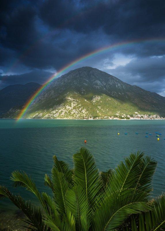Морская радугаphoto preview