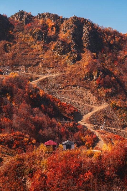 сочи, роза хутор, осень, золотая осень, пейзаж, горы Осенний горный склонphoto preview