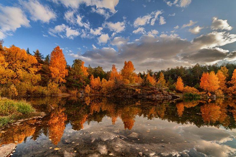 осень, пейзаж, южный урал, челябинск, шершнёвский  бор Осень в Шершнёвском боруphoto preview