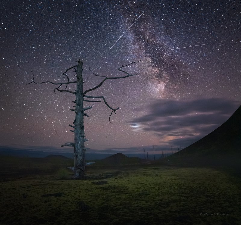 камчатка, мёртвый лес, ночь, звёзды, пейзаж Ночь в Мёртвом лесу...photo preview