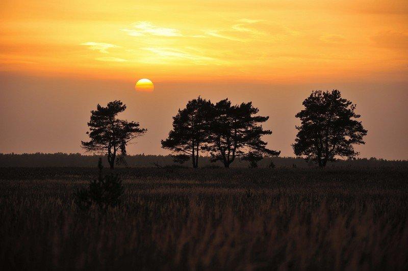 пейзаж, природа, солнце, закат, луна, полная луна Изменчивый пейзаж!photo preview