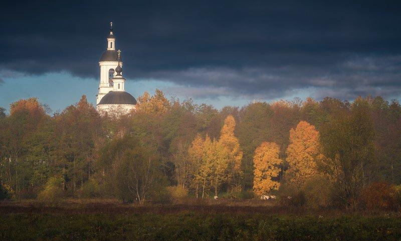 пейзаж, филипповское, утро, осень, природа Осень в Филипповскомphoto preview