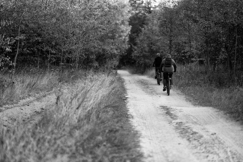 Велопрогулкиphoto preview