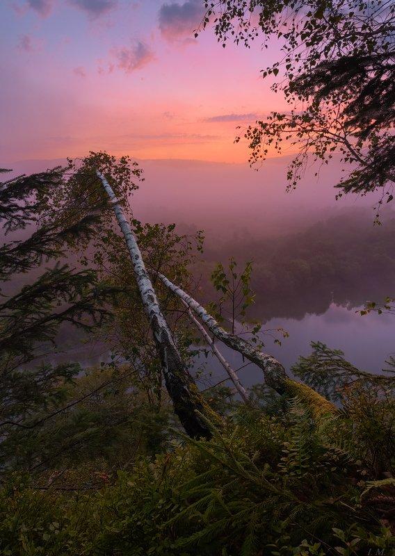 утро, рассвет, утес, река, стрый, пейзаж, туман, свет, краски, деревья, березы, путешествие, украина, прикарпатье, morning, dawn, fog, river, stryi, travel, ukraine, landscape, birch, trees, view from above, misty, colors, light, foggy .. в новый день !photo preview