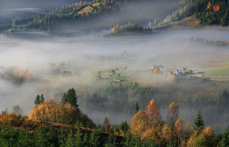 Осеннее утро в Карпатах фото превью
