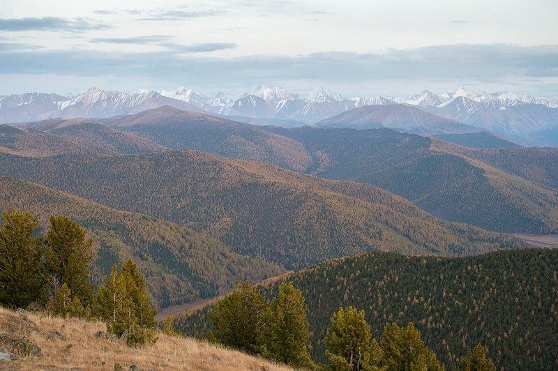 алтай, россия, горы, пейзаж, толмачев дмитрий, закат, Алтай в пастельных тонах... карандашные наброски...photo preview