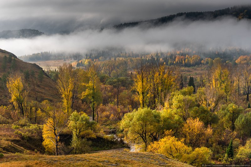 горнаяколывань, осеньнаалтае, алтай2020 Долина реки Каменкиphoto preview