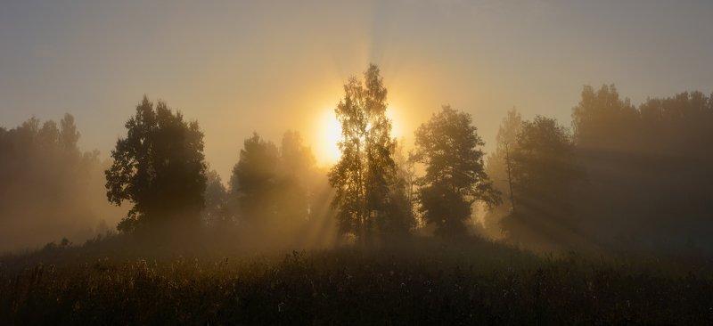 Тула, Ясная Поляна, Воронка Рассветало утро солнцем золотымphoto preview