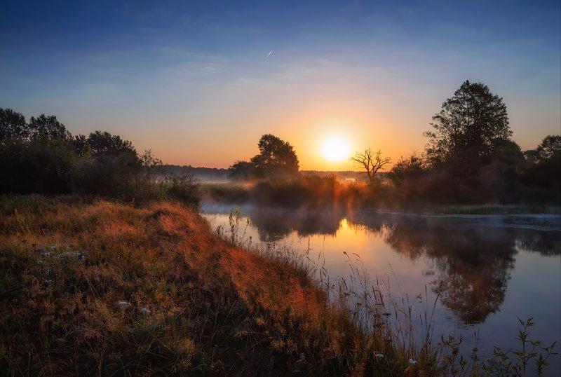 лето, река, рассвет, дымка, Роса на рассветеphoto preview