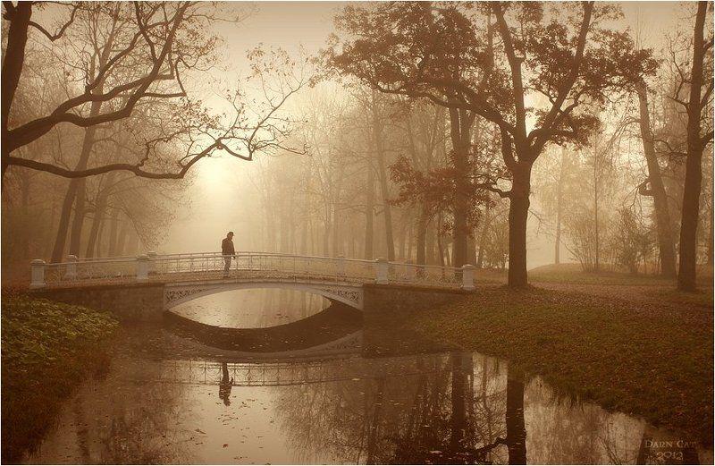 питер, парк, туман, прохожий, человек,  мост Наедине с туманомphoto preview