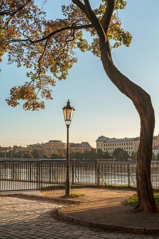 Злата Прагаphoto preview