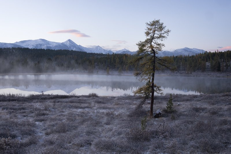 ...Холодное утро...photo preview