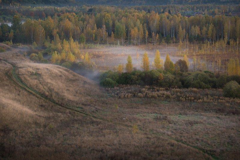 псковская область, изборск, туман, осень, октябрь, изборско-мальская долина, Теплый октябрьphoto preview
