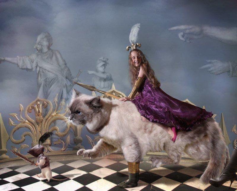 Принцесса едет на войнуphoto preview