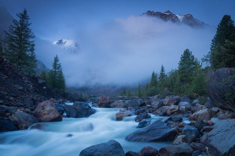 актру, алтай, горы, река, туман, горный алтай, утро Долина Актру туманным утромphoto preview