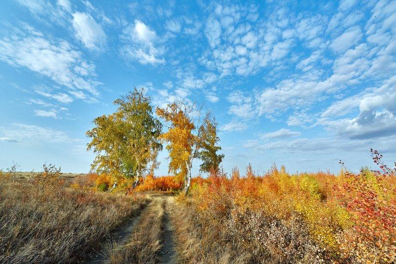 южный урал,оренбургская область, орск, новотроицк, Осень на Южном Уралеphoto preview