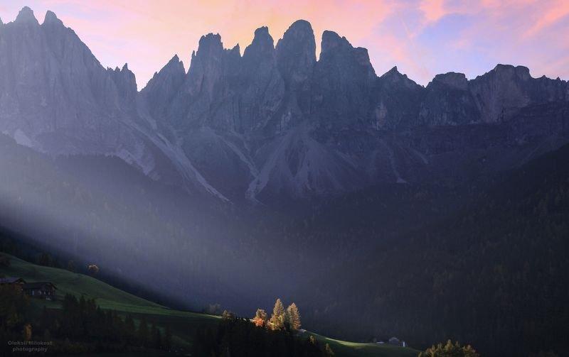 Альпийские стражи фото превью
