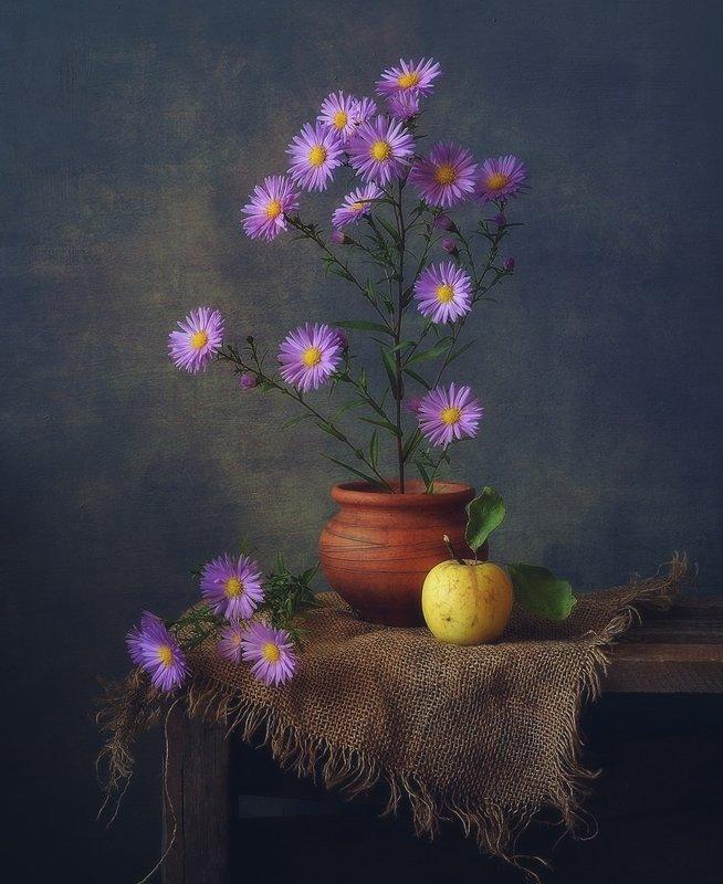 натюрморт,цветы,сентябрины,осень сентябринки...photo preview