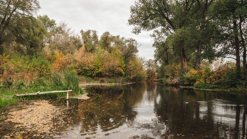 Пейзаж с уткойphoto preview