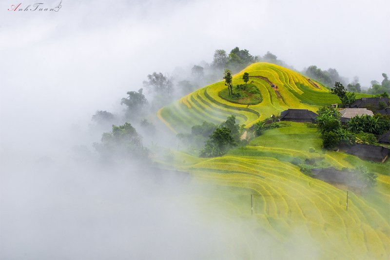 #sellingphoto #landscape Phung Vilagephoto preview