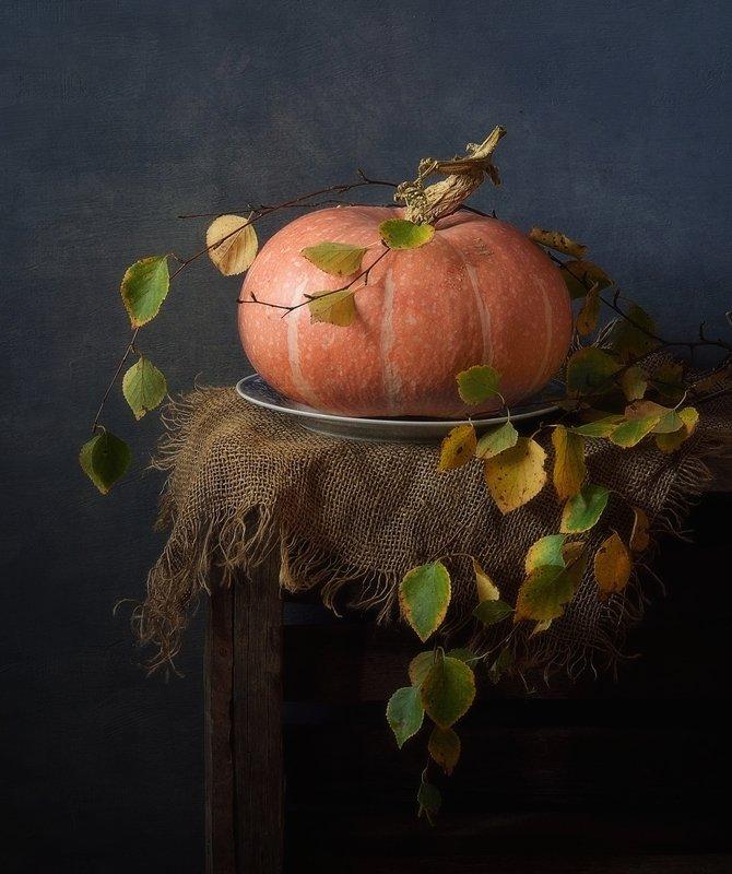 натюрморт,тыква,листья,осень с тыквой...photo preview