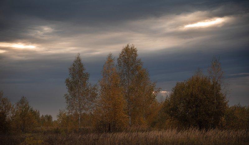 Осеньphoto preview