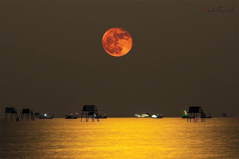 #sellingphoto #landscape Moonphoto preview