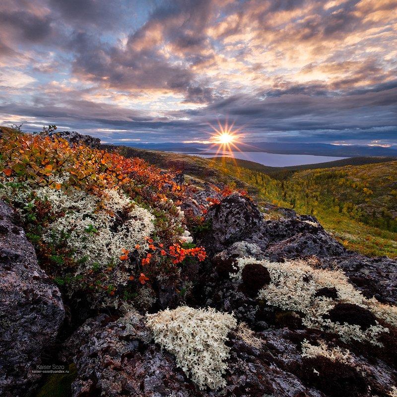 хибины, полярный круг, имандра, камни, мох, золотая осень, закат Лаваphoto preview