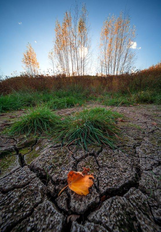 Осень на прудуphoto preview