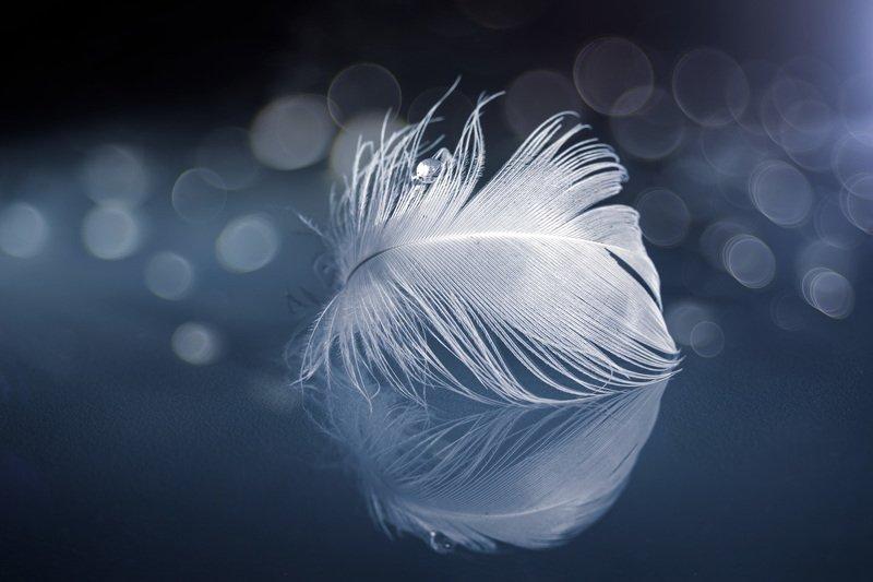 Fantasía de invierno...photo preview