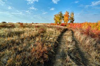 По краю Осени пройдя...
