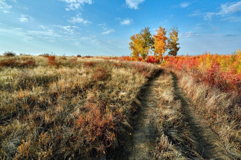 южный урал,оренбургская область, орск, новотроицк, По краю Осени пройдя...photo preview