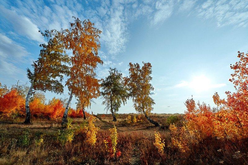 южный урал,оренбургская область, орск, новотроицк, Вечерне-осенняя.photo preview