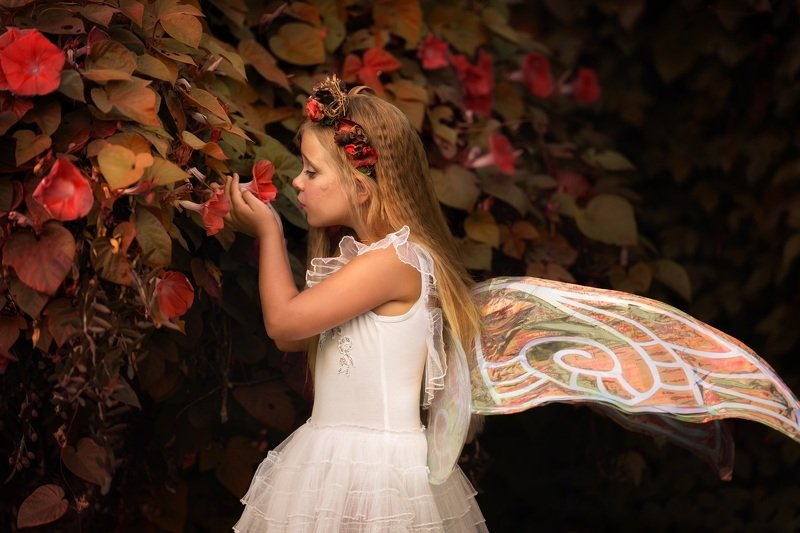 фея ребёнок девочка осень фентези Лесная феяphoto preview