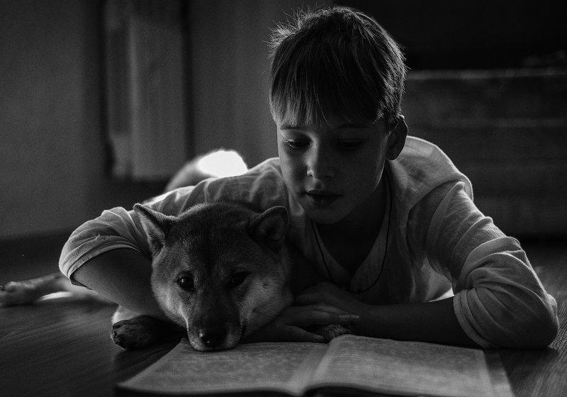 монохром ребенок собака чбфото черно-белое черно белый портрет Сказочникphoto preview