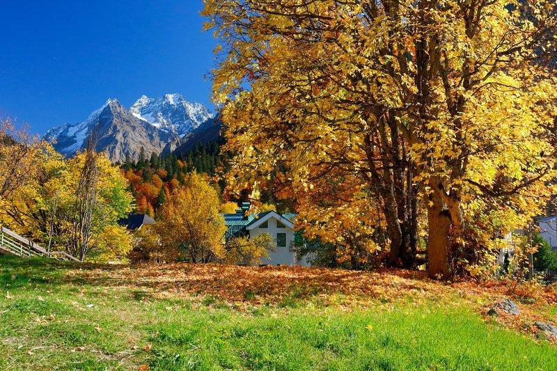 домбай, осень, горы, кчр, Домбайphoto preview